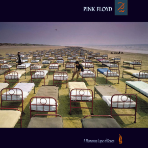 A+Momentary+Lapse+of+Reason